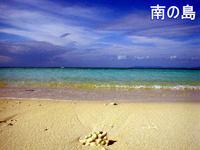 南の島10